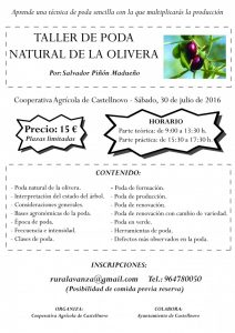 20160730 - Taller poda olivo Castellnovo